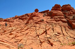Red Rock Fins by Nina (alpenglowtravelers) Tags: coyote south buttes