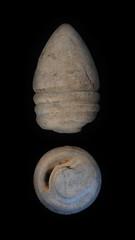 .54 Merrill Civil War miscast (13) (Ks Ed) Tags: metal historic civilwar detector historical bullet dug artifact find relic excavated detecting