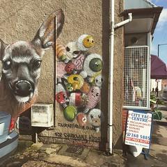 Photo of #streetart #sheffield #urbanart