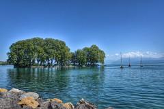 Ile de la Harpe à Rolle (CH) (Annelise LE BIAN) Tags: sunshine eau suisse vert bleu damn paysages nwn rolle coth supershot fantasticnature lacléman iledelaharpe alittlebeauty fantasticnaturegroup