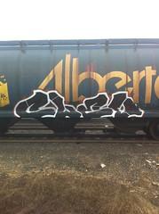 CLEV (2ONE5-1981 (S.O.B.A.)) Tags: art train graffiti steel rail american boxcar graff westcoast freight hobomoniker