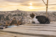 Sunset over Uchisar with Kitty (lam wenjie) Tags: sunset panorama cat turkey landscape east fujifilm middle cappadocia uchisar kappadokya x100t