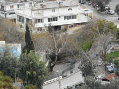 (Psinthos.Net) Tags: road trees houses winter cars square day village cloudy january valley greens fields planetrees shrubs cypresstree panoramicview basicschool    vrisi psinthos                     psinthossquare   psinthosvalley   vrisiarea psinthosschool vrisipsinthos