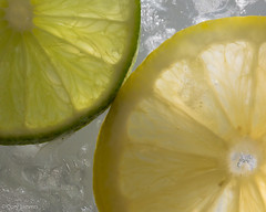 "Lemon & Lime on Ice • <a style=""font-size:0.8em;"" href=""http://www.flickr.com/photos/92159645@N05/16233826492/"" target=""_blank"">View on Flickr</a>"