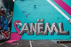 Aneml AF PI CBS EMT (Eduardo Soriano-Castillo) Tags: graffiti oakland bayarea eastbay oaklandgraffiti eastbaygraffiti bayareagraffiti graffitiphotography hellagraffdotcom graffitichillspots