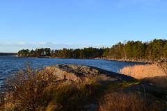 A view west towards Nuottaniemi (Uutela recreation area, Helsinki, 20111126) (RainoL) Tags: november autumn sea finland geotagged helsinki balticsea u helsingfors fin vuosaari uusimaa uutela nyland 2011 201111 20111126 geo:lat=6019617900 geo:lon=2516688400