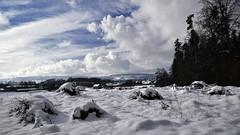 Wintertag (ponte1112) Tags: sky cloud snow schweiz switzerland nikon suisse che tamron nikonshooter uster myswitzerland nikoncapturenx d5300 ponte1112 tamron16300