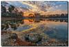 Sunrise at the Lake (Fraggle Red) Tags: morning sun lake reflection clouds sunrise landscape nationalpark rocks florida evergladesnationalpark campground hdr enp longpinekey 7exp canonef1635mmf28liiusm miamidadeco dphdr canoneos5dmarkiii 5d3 5diii adobelightroom5