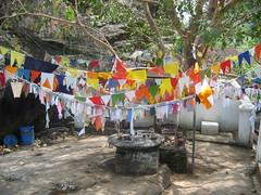 Prayer Flags in Sri Lanka