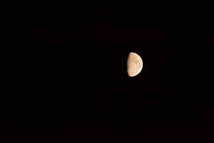 DSC_3820 (Francesco Macelloni) Tags: moon summer tuscany florence boboli night july love santospirito oltrarno piazzapitti piazzasantospirito