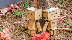Under the tree (ozzie_f@rocketmail.com) Tags: toys danbo toyphotography danboard olympusomdem5