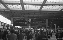 Which Platform? (Mindori Photographic) Tags: film filmphotography filmisnotdead filmfeed filmforever buyfilmnotmegapixels buyfilmandmegapixels ishootfilm analoguephotography analogphotography analogue 35mm canon canonsureshotsupreme sureshotsupreme fp4 ilfordfp4 id11 ilfordid11 blackandwhite blackandwhiteonly station trainstation railwaystation publictransport london stpancras londonstpancras commuters commuting