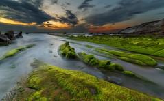 Barrika (Alfredo.Ruiz) Tags: alga barrika clouds foam green ocean rock sea summer sunset