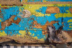 Doorways in the Sand (Camomelle) Tags: texture colour door doorways beach sand paint cracks urban