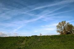 Oltre il giardino (AlessandroDM) Tags: pisa toscana ponsacco