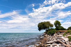 Summer along the Shore (HJharland5) Tags: lake lakeerie outdoor shoreline landscape water bue sky clouds seaside coast shore summer cleveland nikon j5 tree