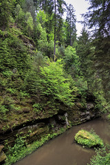 160524_155941_CB_0322 (aud.watson) Tags: europe czechrepublic bohemia decindistrict hrenska riverkamenice kamenicegorge edmundgorge gorge ravine river water rocks rockformation cliffs