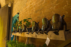 Read-It.......Read-It........Read-It (williamrandle) Tags: fun frogs croftcastle yarpole welshmarches castle history brick wall light softlight estate dayout visit nikon d7100 tamron2470f28vcsummer 2016
