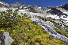 Forbidden Peak, Washington (Kevin Machtelinckx) Tags: climb climbing northcascades washington glacier ropes technical 50classicclimbs avalanche hike adventure garmont canon 7d pnw pacificnorthwest