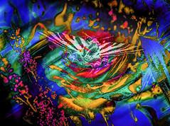 Planeando. 28625468840_b985e7dd06_o (seguicollar) Tags: virginiasegu rosa mariposa lepidptero planta vegetal insecto imagencreativa photomanipulacin arte artedigital artecreativo