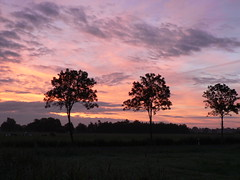here comes the sun (achatphoenix) Tags: early morning water eau aqua dust rural sky cielo ciel ostfriesland eastfrisia onthebridge