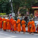 130. Laos. Luang Prabang. Cérémonie des offrandes aux moines, au lever du jour thumbnail
