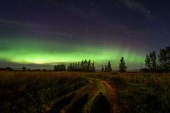 Untitled (TigerPal) Tags: saskatchewan sask night sky dark rural aurora auroraborealis northernlights north stars shadow silhouette silhouettephotography nightsky