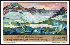 Liebig Tradecard S1328 - Cape Crozier (cigcardpix) Tags: tradecards advertising ephemera vintage liebig