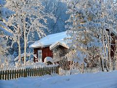1st DEC | Winter Wonderland (Toni Kaarttinen) Tags: christmas xmas winter house holiday snow fence suomi finland season finnland december advent yule adventcalendar wonderland finlandia holidayseason フィンランド finlande finlândia finnország finlanda finlàndia финляндия finnlando فنلندا
