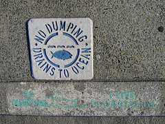 No Dumping, San Diego, CA (Robby Virus) Tags: ocean california fish streets water sign concrete death sandiego pavement no pollution curb dumping drains