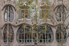 Casa Batlló (Antoni Gaudi's masterpiece) First floor, Barcelona, Spain with DMC GX7