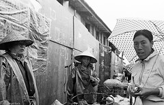 Rain on Market Day (Photomatic Gwailo) Tags: china blackandwhite bw film wet monochrome rain weather cn umbrella market 400tx professional raindrops kodaktrix yunnan dali press raining trader id1113 nikonf3p nikkor35mmf20ais digitizedfilmnegative film201406
