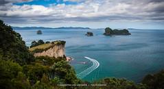 Coromandel (SamanthaMichele) Tags: newzealand cloudy hiking nz northisland coromandel onthewaytocathedralcove