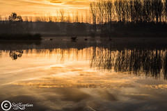 Start! (sirixception) Tags: morning light sun reflection nature water sunrise licht natuur zon ochtend zonsopgang zoutleeuw reflectie vlaamsbrabant hetvinne sirixception sirixceptionfotografie