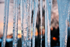 icicles at sunset (nick see) Tags: sunset icicles nickchapman