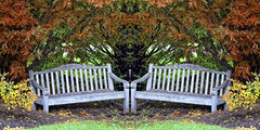 bench symmetry (LotusMoon Photography) Tags: autumn color fall beautiful photomanipulation photoshop bench creative vivid images symmetry foliage created mirrored imagination symmetrical vividcolor benchmonday happybenchmonday