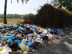 Garbage is everywhere in Goa (joegoauk73) Tags: garbage goa rubbish bags joegoauk kochro