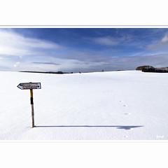 Loipe (horstmall) Tags: schnee winter snow skiing hiver crosscountry neige skifahren schifahren langlauf skidefond wegweiser schwbischealb loipe swabianalps poteauindicateur donnstetten rmerstein jurasouabe horstmall bottenhalden