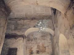 Basilica_Porta Maggiore_N