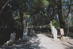 () Tags: trip japan kyoto