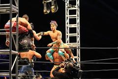 TNA Impact Wrestling London 2015. Maximum Impact Tour 7 London 2015 (SideLineSP) Tags: tour wrestling 7 impact wembley maximum tna