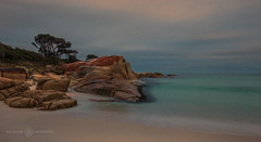 Friendly Beach (Paul Bruner Photography) Tags: australia tasmania redrock aboriginal sthelens eastcoast rockycoastline friendlybeach bayoffire whitebeaches