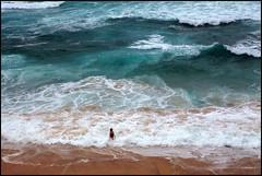 """Brave & Competent"" - Tamarama Beach, Australia (TravelsWithDan) Tags: ocean sea woman beach water sydney australia swimmer tasmansea frothingseas"