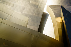 Walt Disney Concert Hall (inferno10) Tags: california travel usa reflection building architecture us losangeles landmark structure domestic socal a7m2