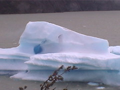 Ice Berg Island