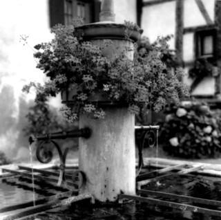 Founta in Alsace