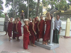 Young Monks on School Field Trip Yangon