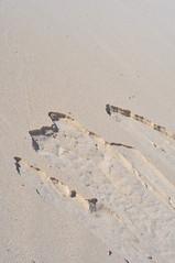 Sandvalanch (budd stanley) Tags: expedition desert offroad 4x4 australia 4wd perth budd westernaustralia northhead pinnacles toyotalandcruiser sandycape buddstanley