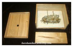 Butterfly Crown (Kurokami) Tags: ladies girls woman ontario canada girl japan lady vintage butterfly hair asian japanese women asia box antique traditional lindsay chou ornament ornaments kimono chrysanthemum kitsuke kiku kanzashi pulownia