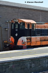 134 at Connolly, 19/7/16 (hurricanemk1c) Tags: dublin irish train gm rail railway trains 121 railways irishrail 134 generalmotors 2016 emd connolly iarnrd ireann rpsi iarnrdireann railwaypreservationsocietyofireland 1330inchicoreconnolly rpsidieseltransfer